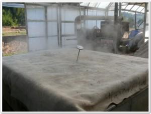 蒸気で土を浄化中