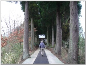 志土知の紫神社へ参る