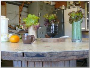 室内やキッチンで栽培する