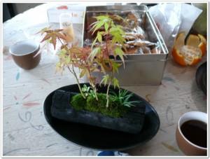 福井県から木炭寄せ植え
