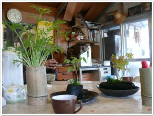 水菜を竹プランターで栽培