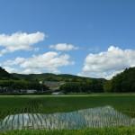 自然キャンパスの景色