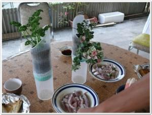 これぞ食卓菜園