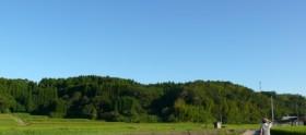 fall2011