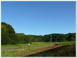 茜川側の畑