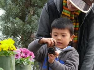 竹プランターの花を撮影