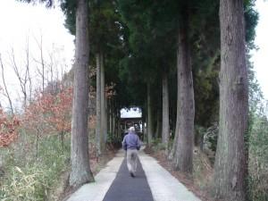 2011年3月紫神社