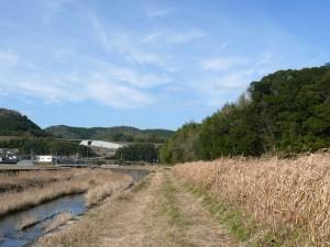 茜川下流方面