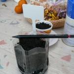 ペンを使って浮上した種を押しこむ
