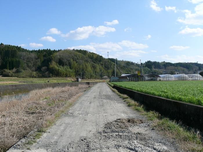 茜川沿いの道路