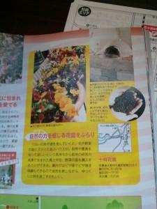 2012年シティ情報おおいた4月号