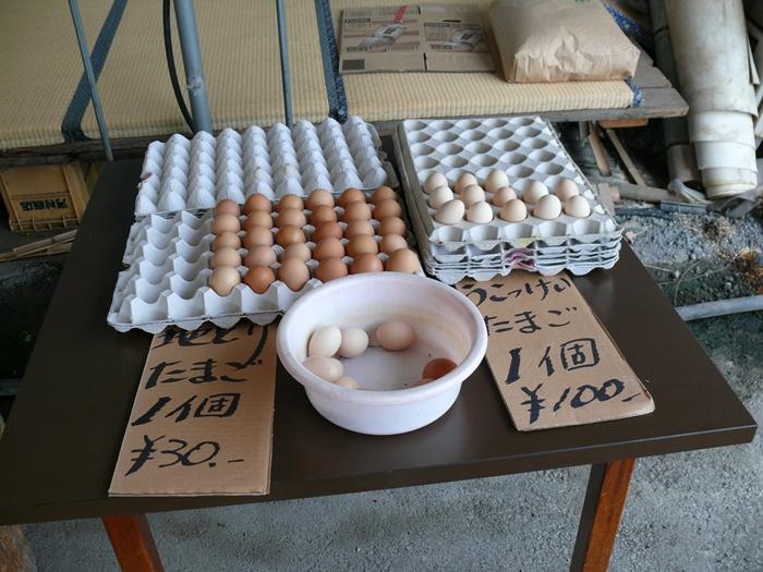地どりと烏骨鶏の卵