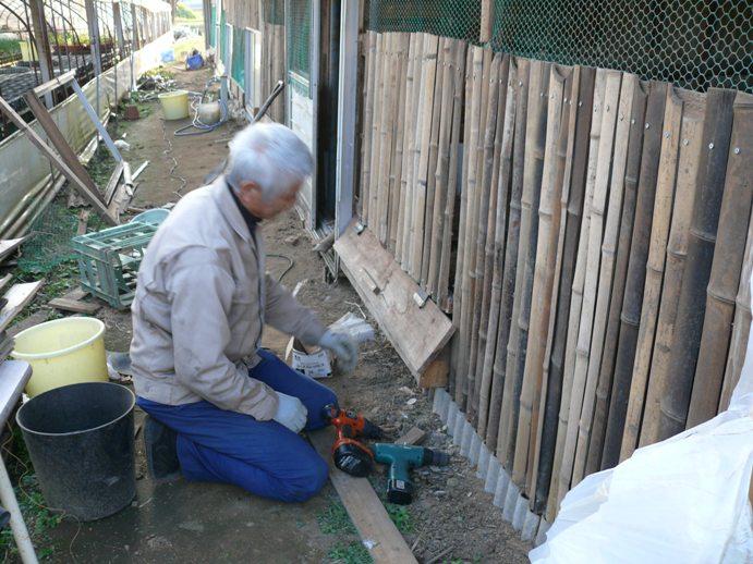 鶏小屋の餌台を修復中