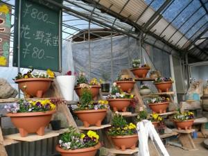 十時花園の直売場
