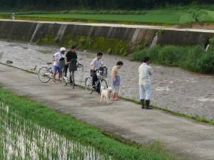 茜川を覗き込む地元人
