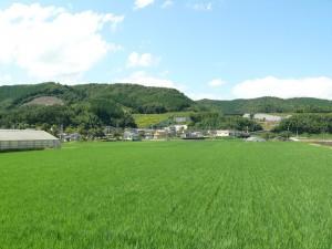 千歳町の景色