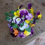 孫お手製のお花畑
