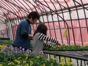 花に触れる時間