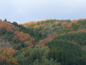 千歳町12月の山々