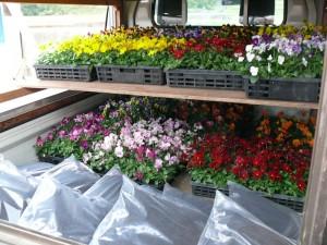 花の苗や黒土