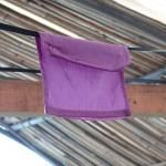 紫草染め2016
