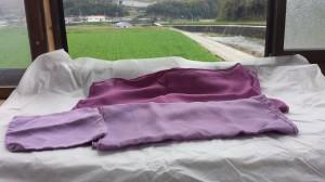 紫草に染まる