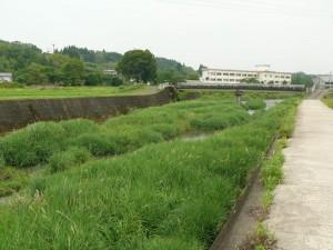 2016茜川の6月