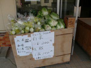 千歳町の無人野菜販売